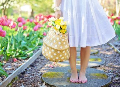 Cuida tu jardín y tu salud al mismo tiempo