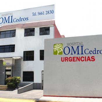 Hospital Operadora Medica Integral Los Cedros