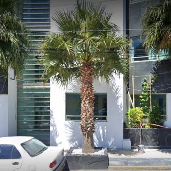 MediCáncer UMAE Hidalgo